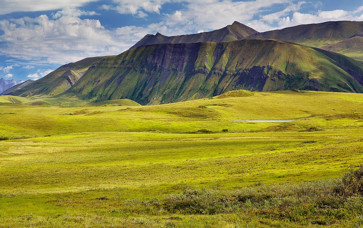 Southern Arctic Foothills