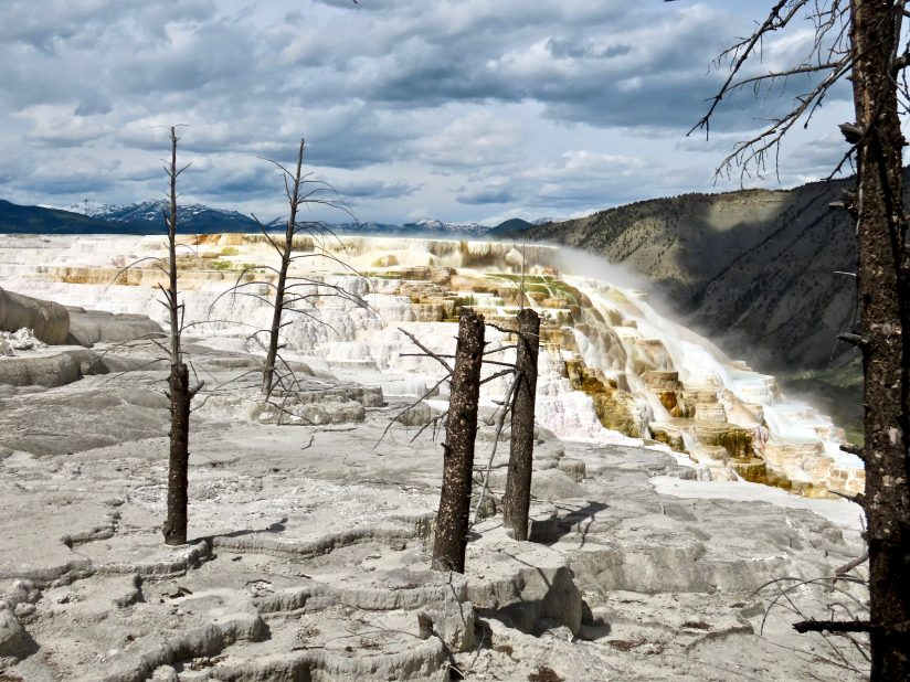 Canary Spring, Mammoth Terraces, Yellowstone