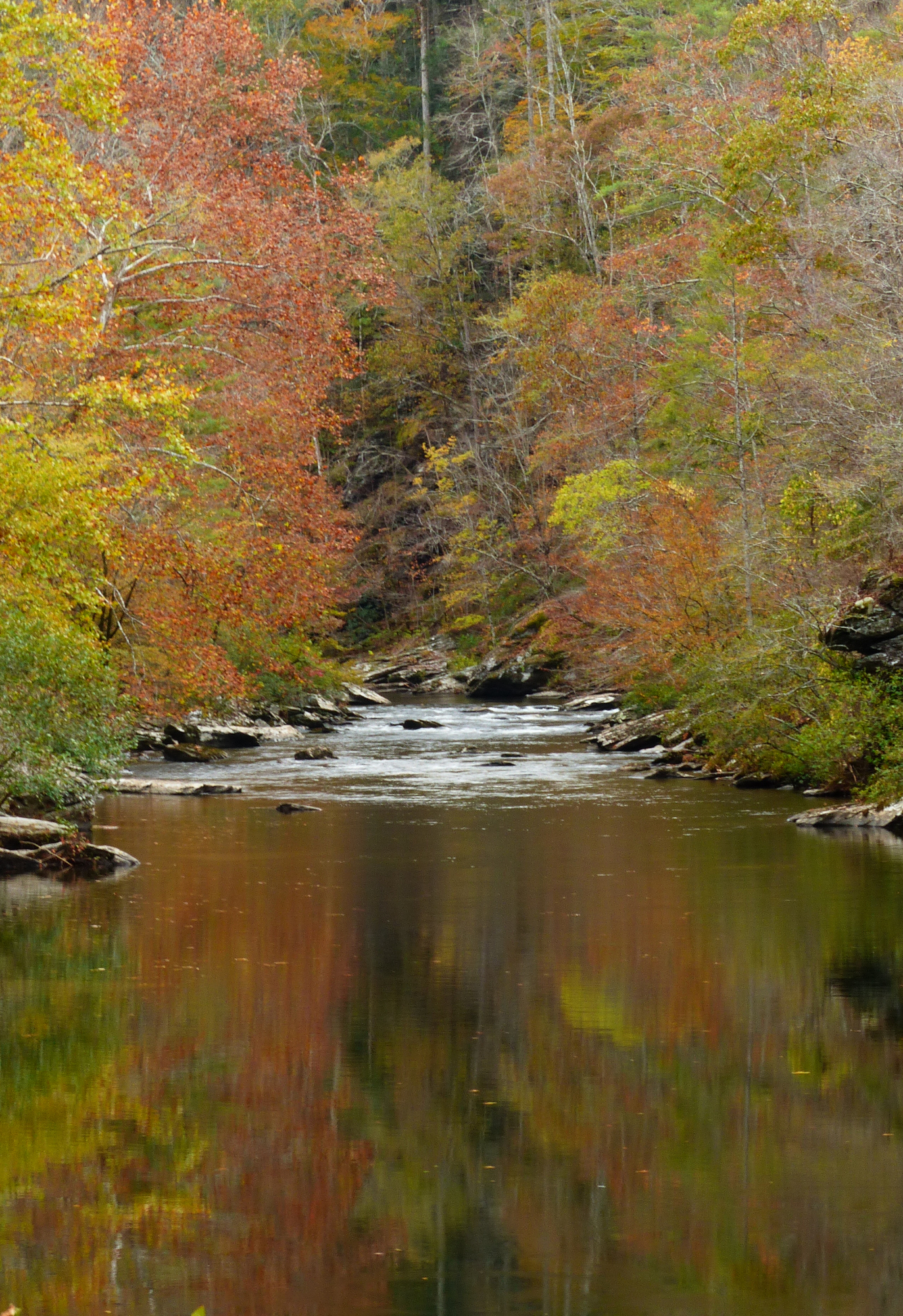 Tellico Rivver Reflections