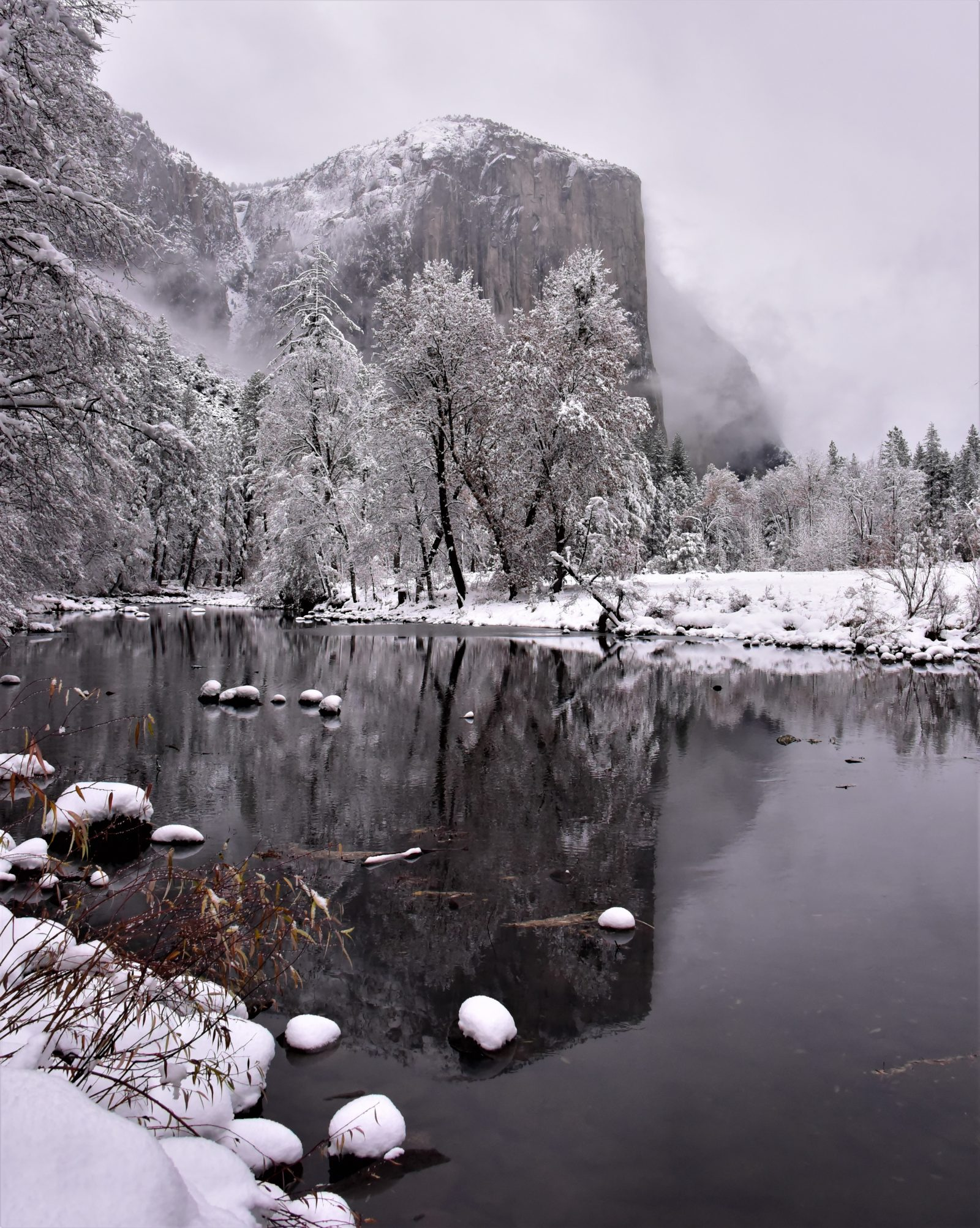 Snowfall at Yosemite