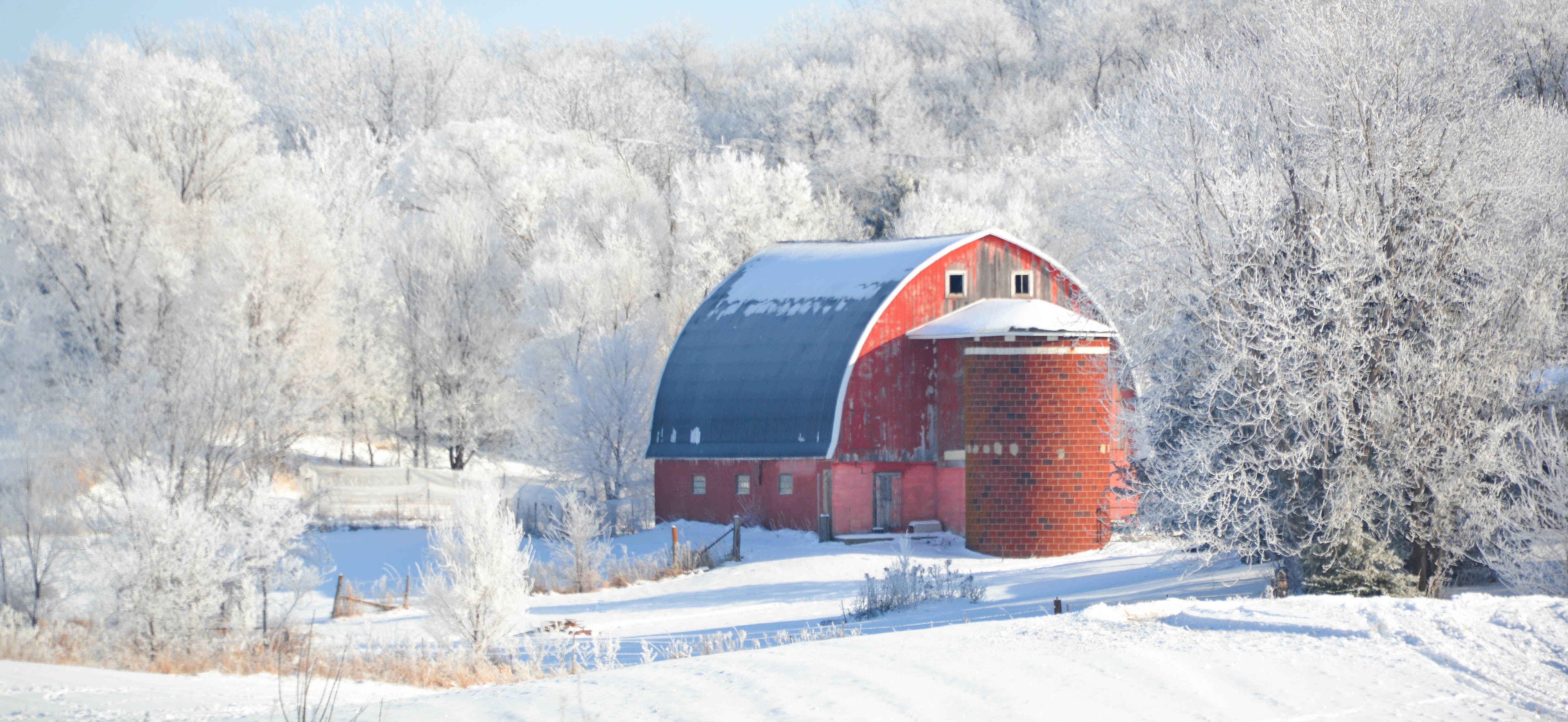 Snow Covered Farmyard