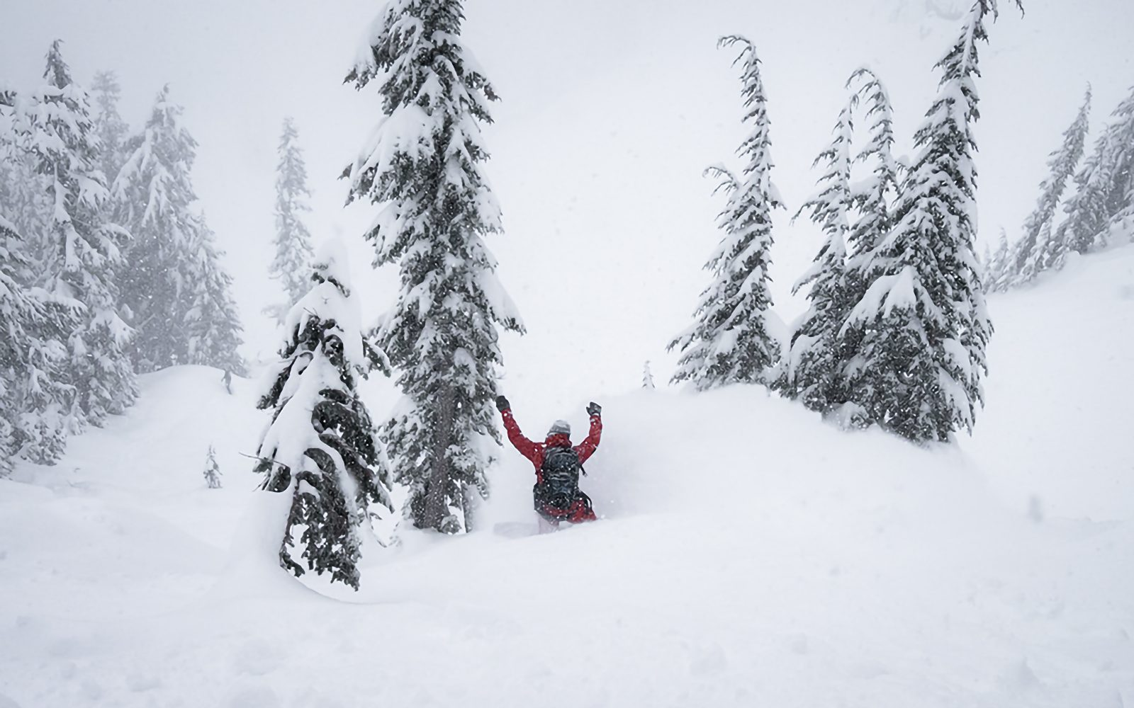 BackCountry Snowboarding In Major Storm