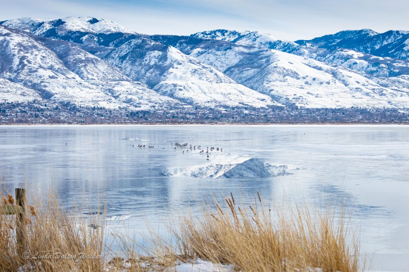Farmington Bay, Utah