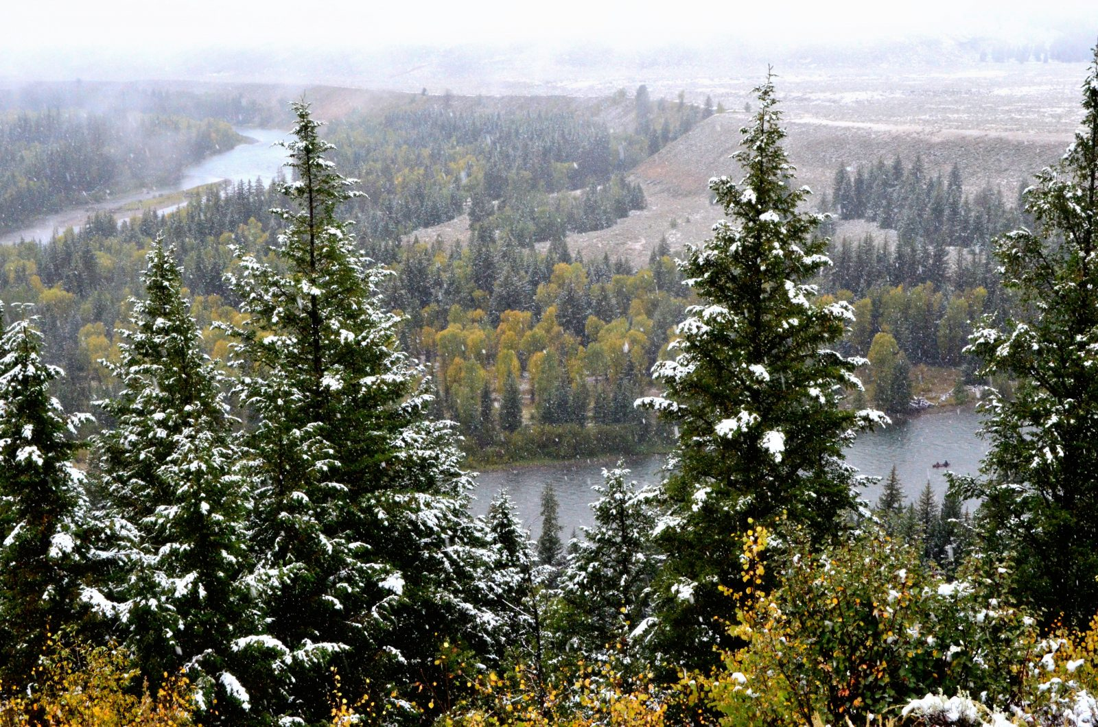 Snowing Over the Snake River Overlook