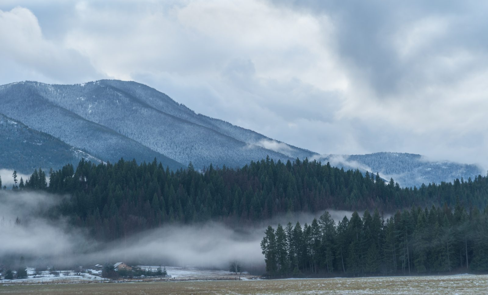 Snow and Fog on the Cabinet Mountains
