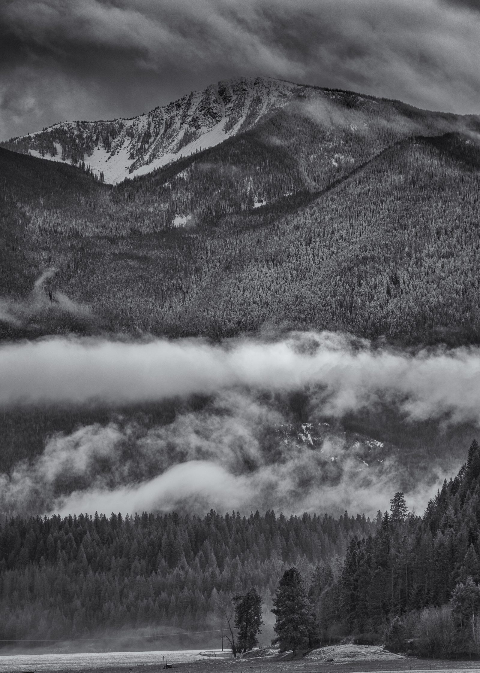 Clifty Mountain and Fog