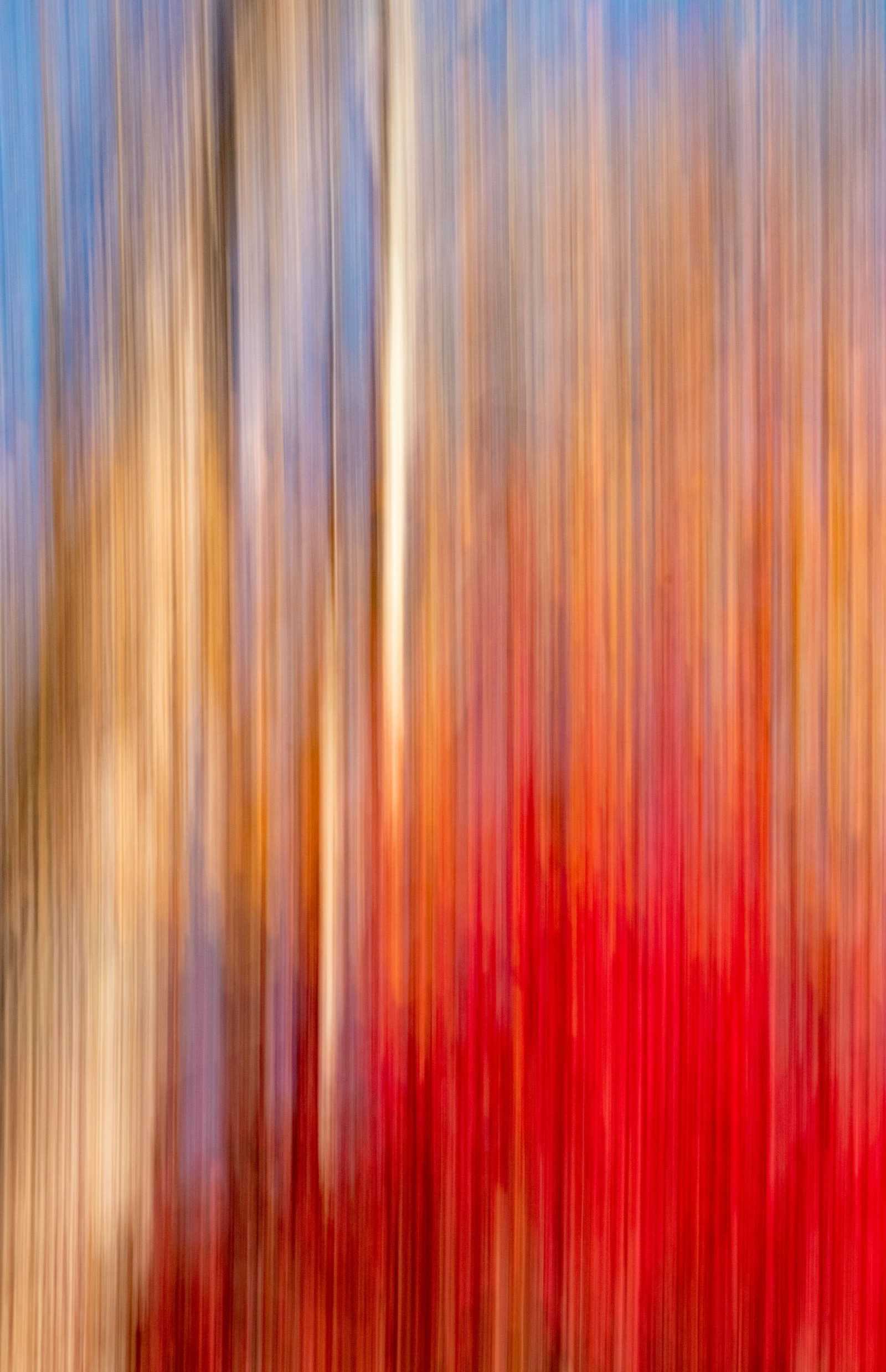 Fall Scene Abstract
