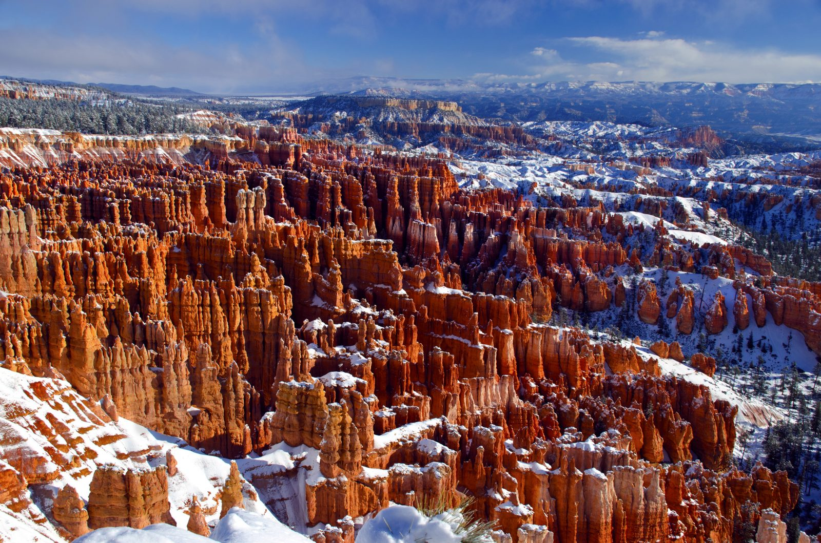 Snow covered Bryce