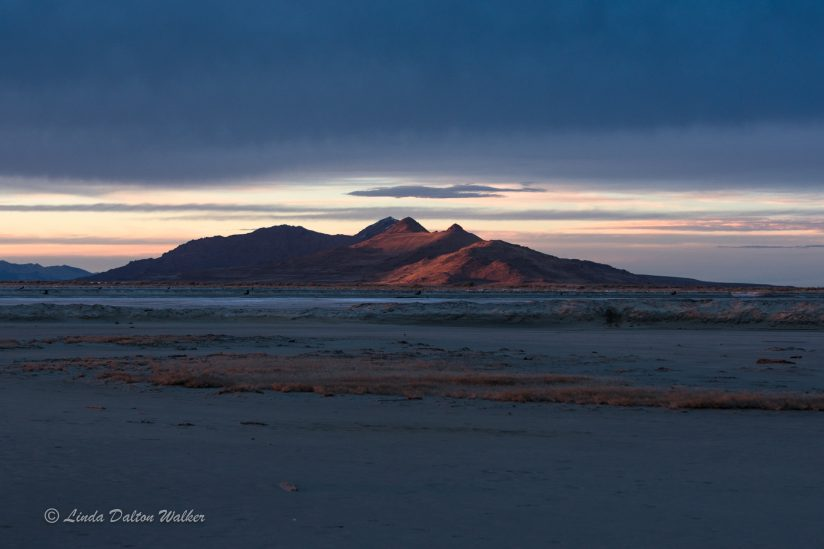 Antelope Island at Sunset