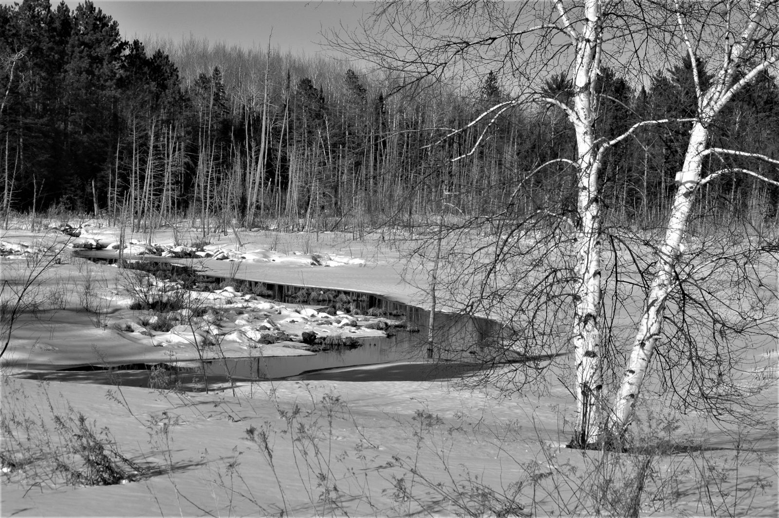 Just Before the Spring Thaw….