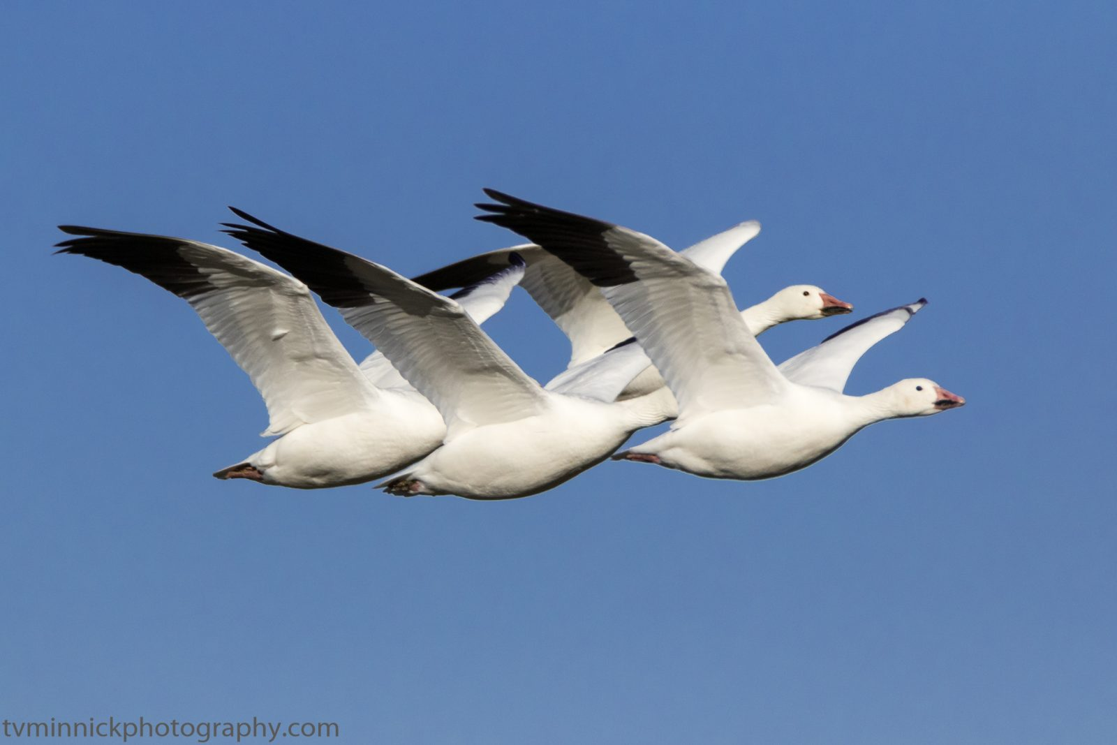 Formation Flying