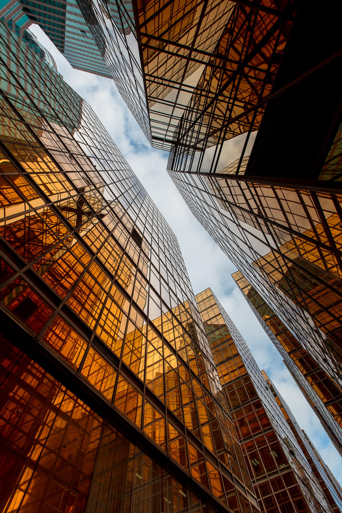 View from Below..