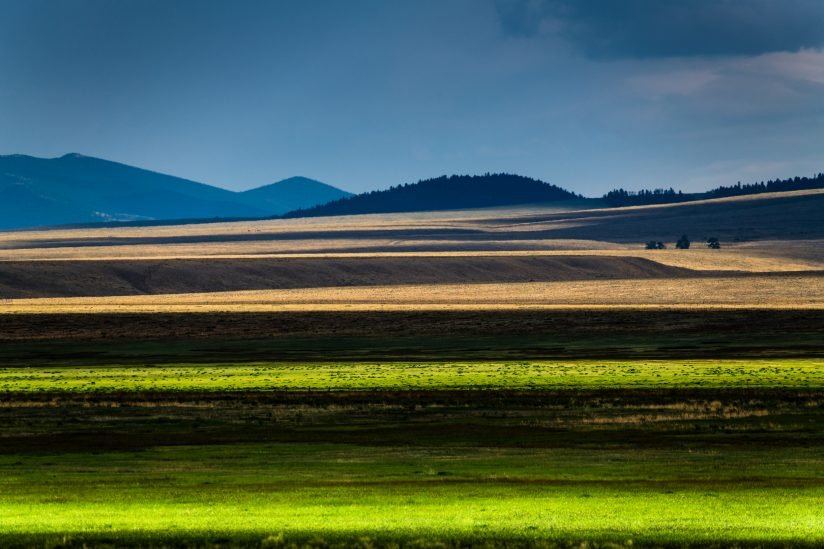 Fields with Layers of Light