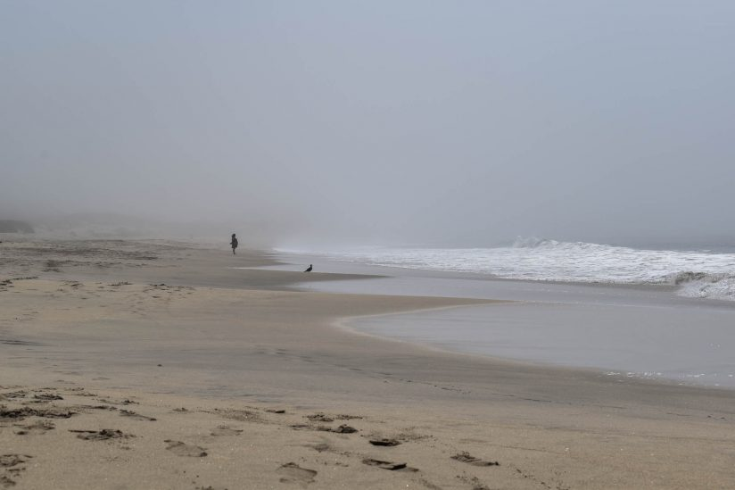 Misty day at the beach