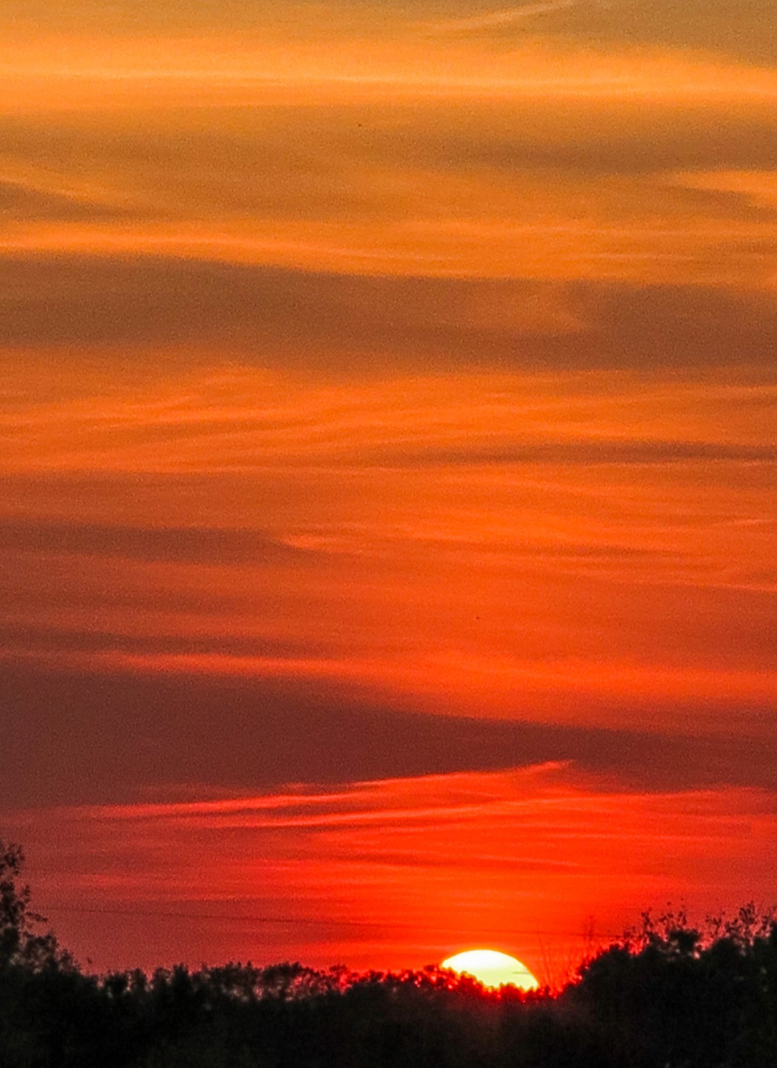 Sunset Colored Clouds
