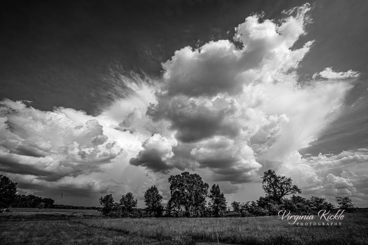 Storm Brewing on the Prairie