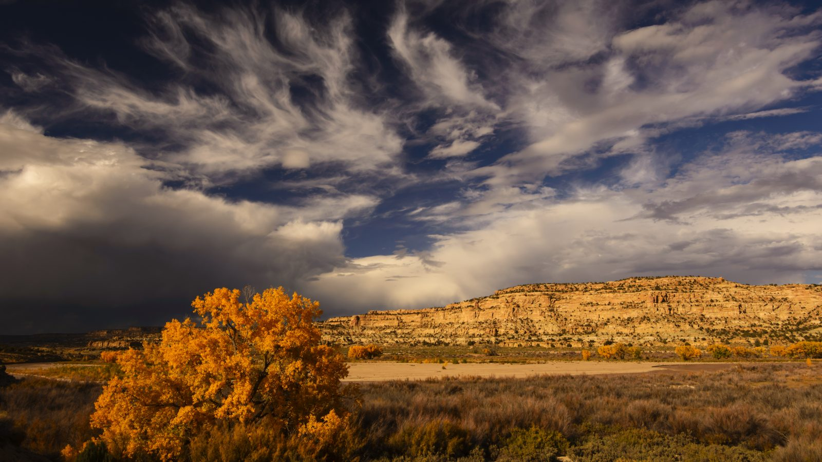Cottonwood Clouds