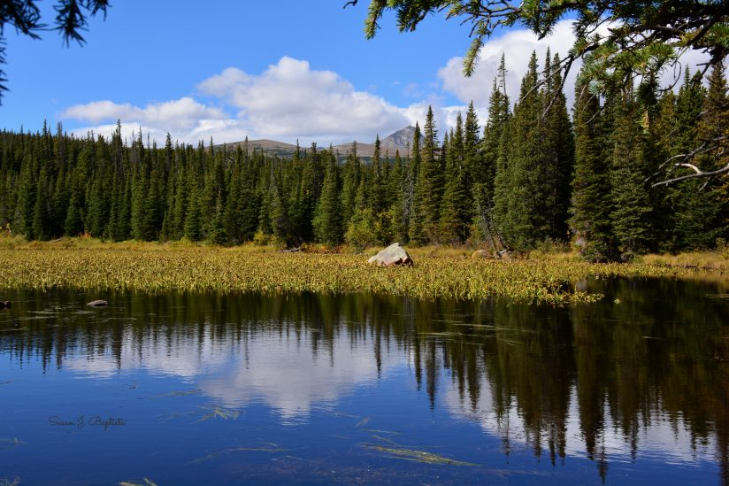 Brainard Lake Mirror Image