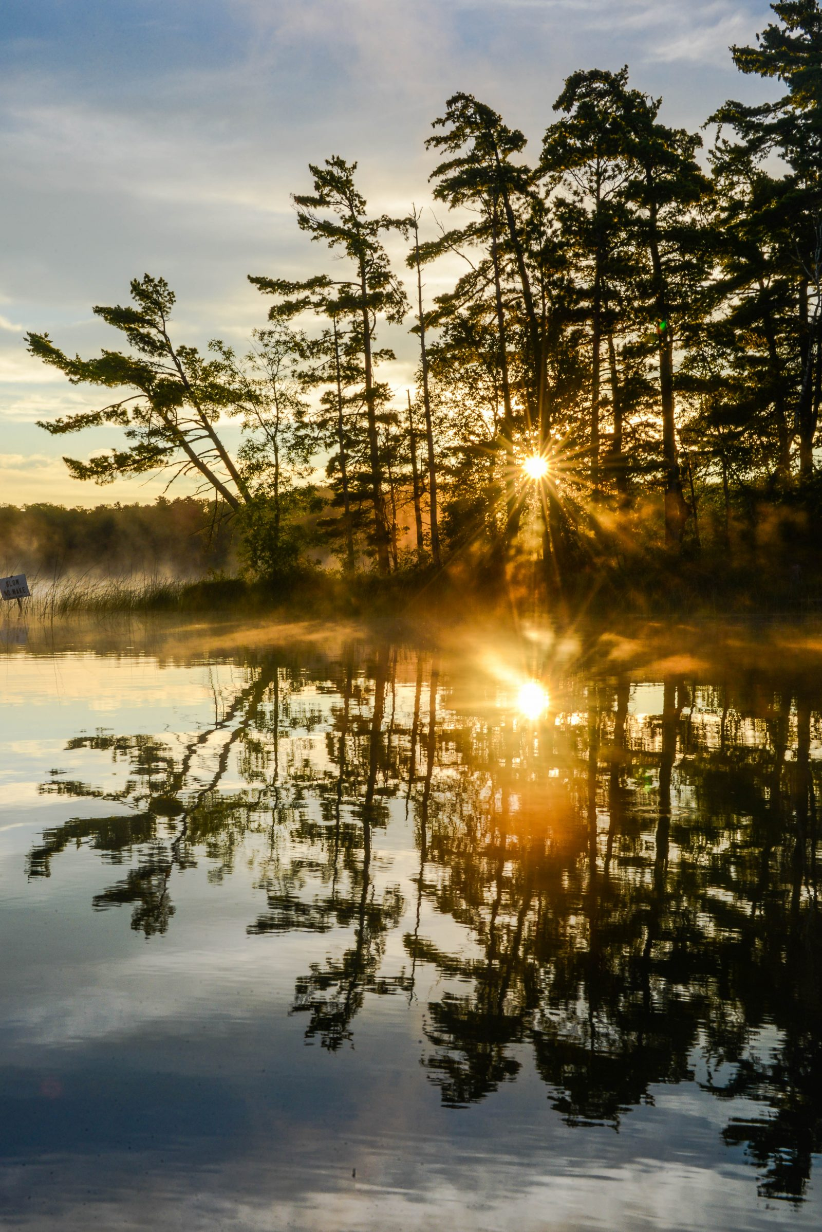 Reflections on a Summer Morning