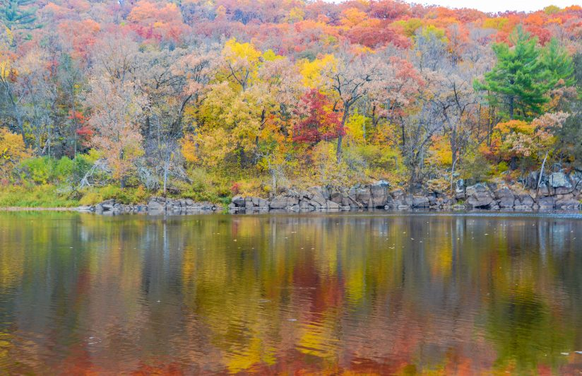 Reflections of Fall Color
