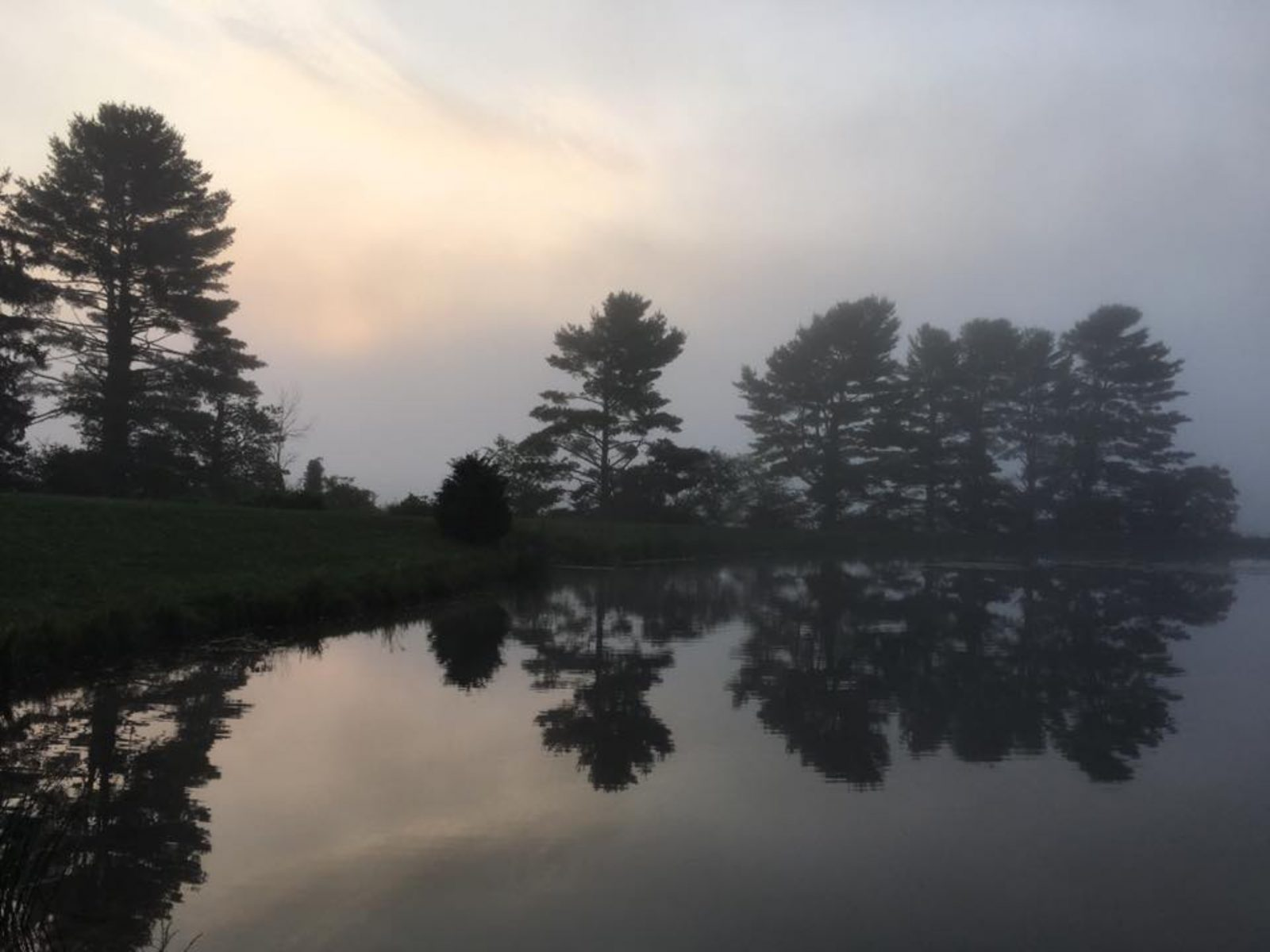 Sunrise in the fog over the pond