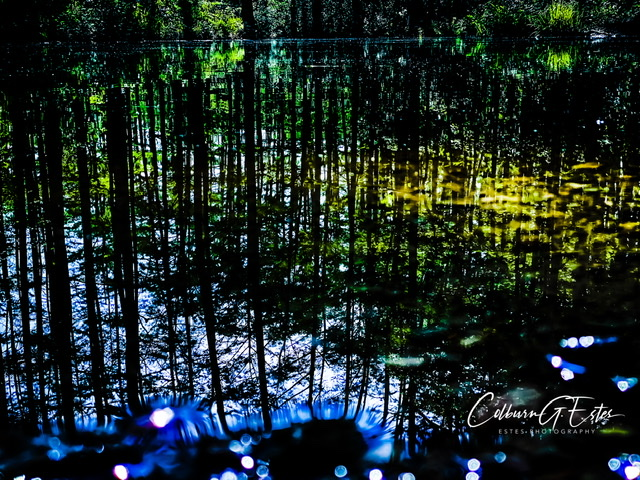 Tennessee Lakes/Swamps