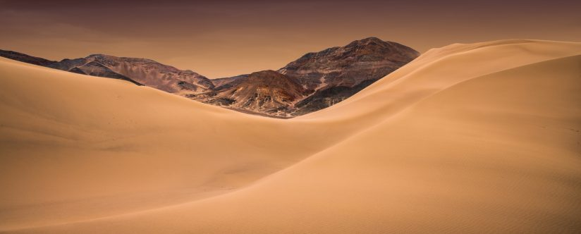 Desert Light