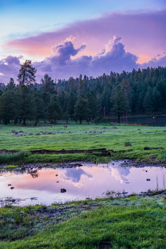 Blue Hour/White Mountains