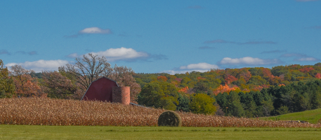 Countryside During the Fall