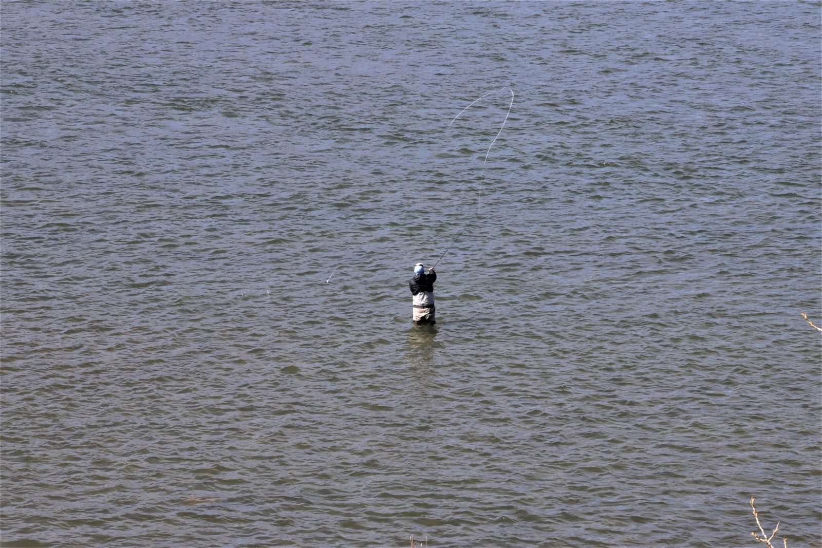 Lazy Day Fly Fishing on the Missouri river