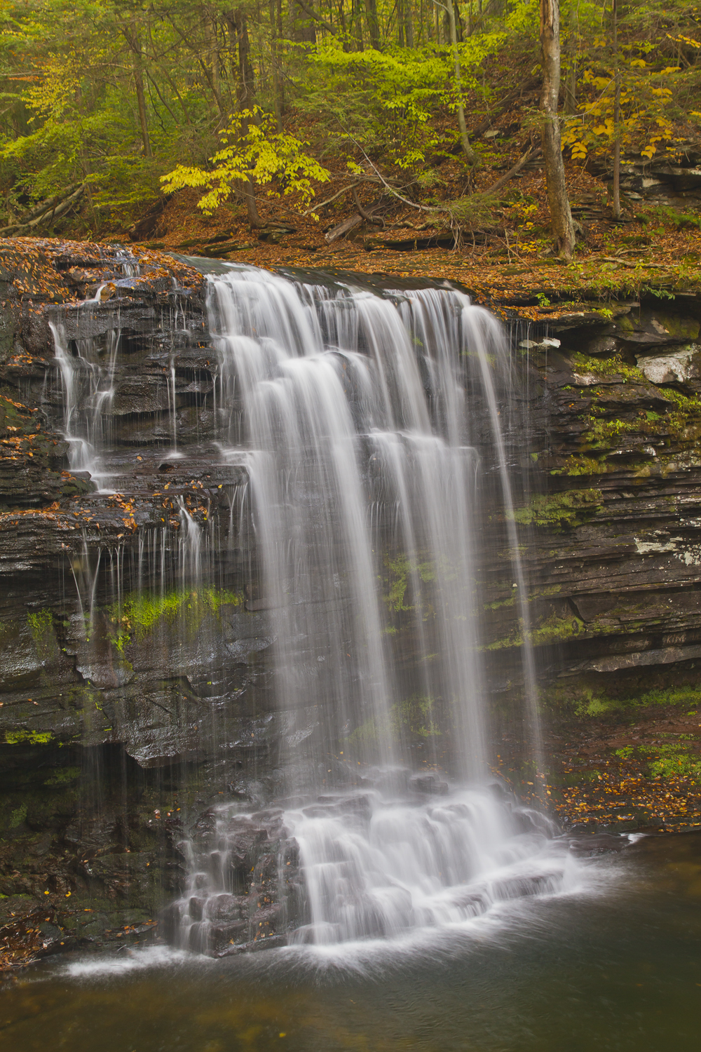 Harrison Wright Falls Ricketts Glen State Park