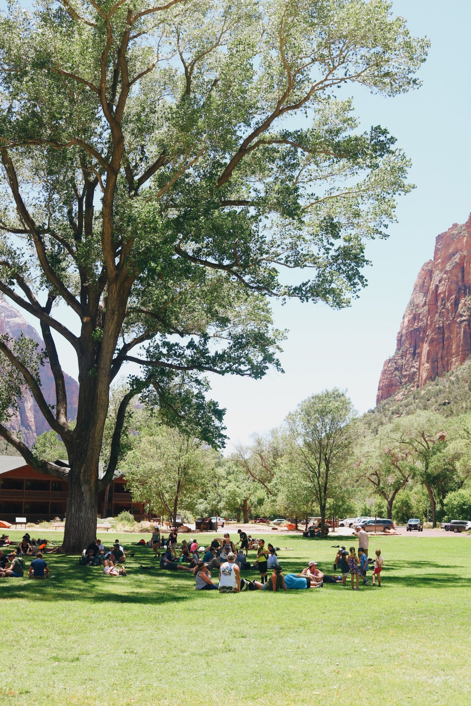 Under the shade of Zion