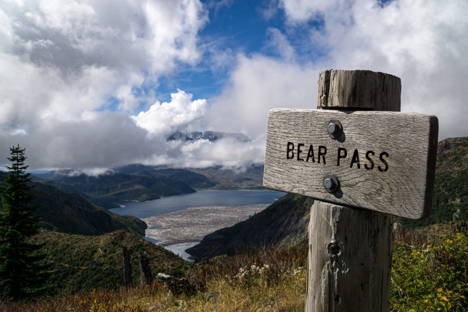 Bear Pass Overlook
