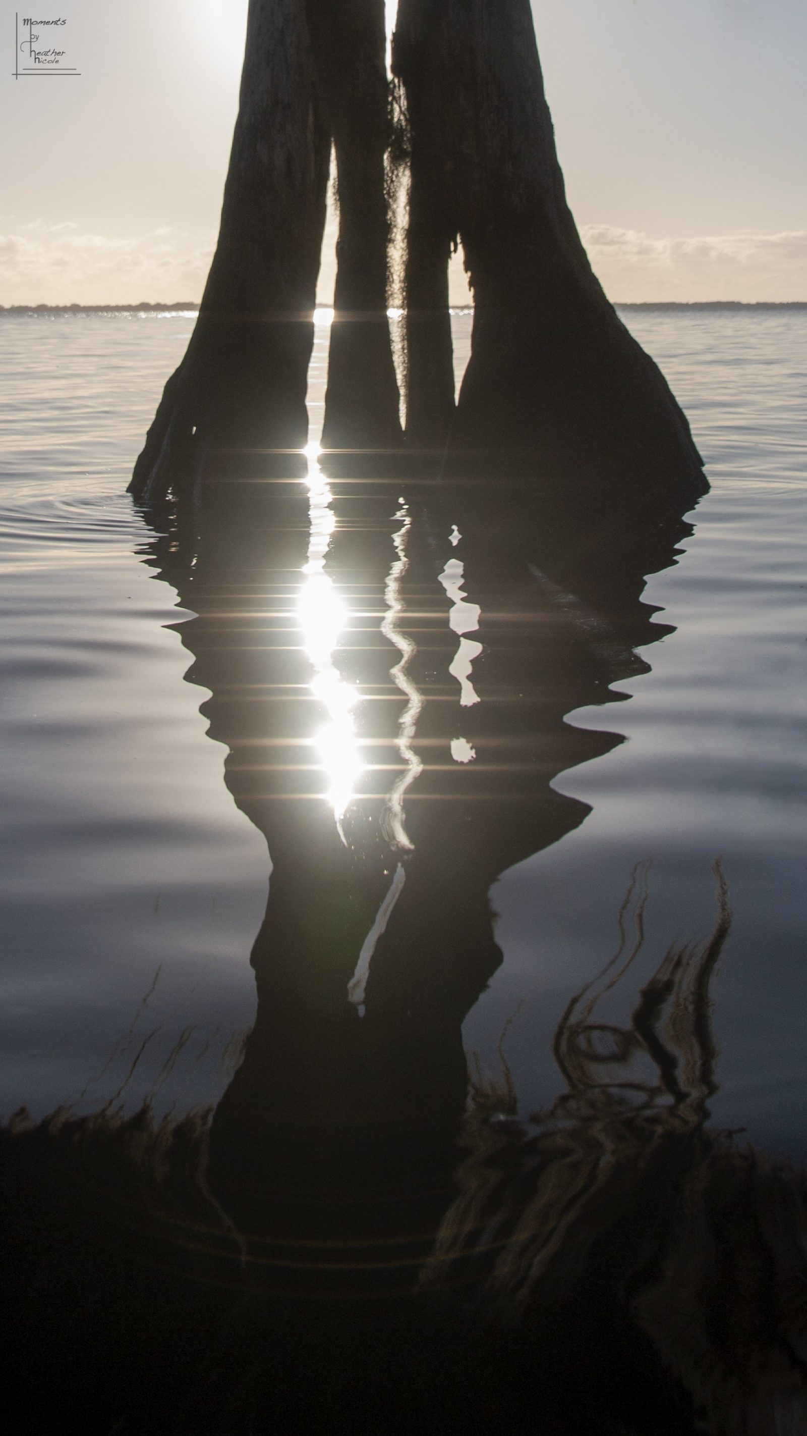 Refracted Reflections