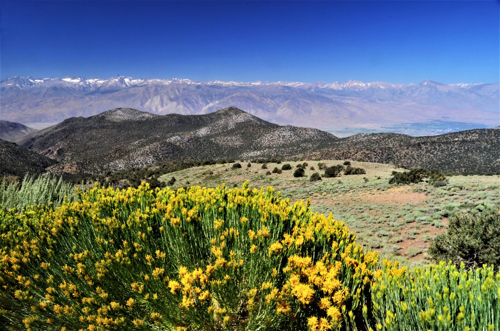 Across The Owens Valley