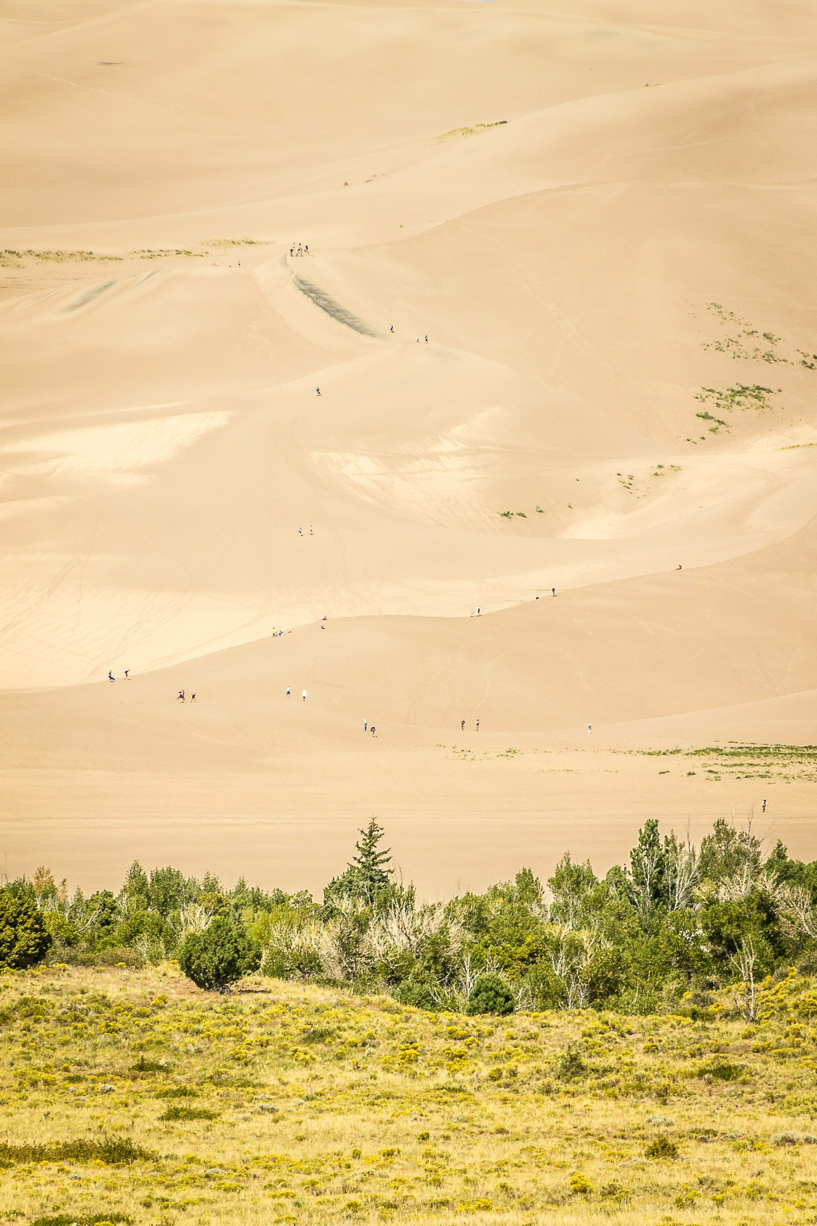 Sand Dune Hiking in the Rockies 2