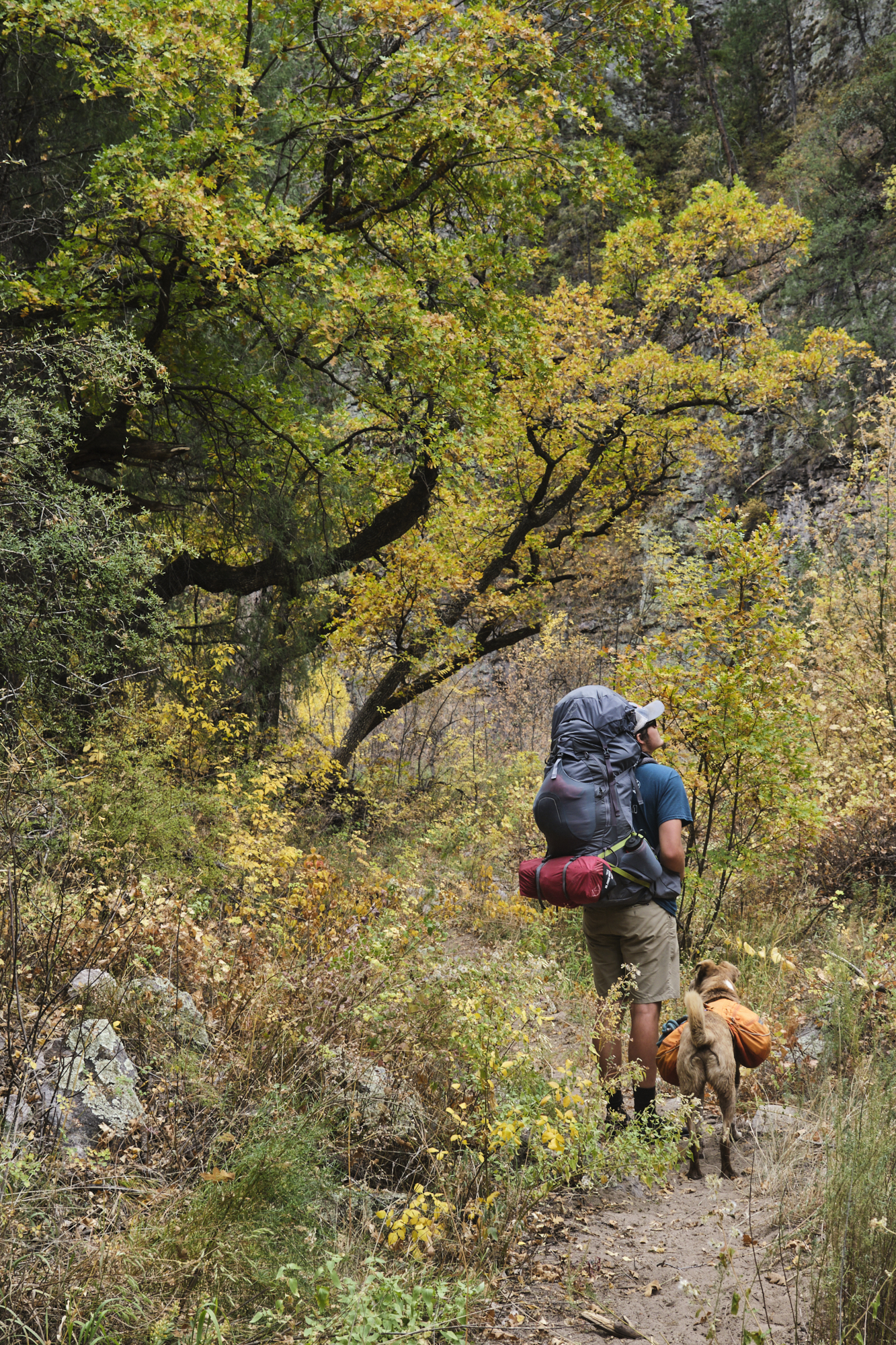 Autumn Backpacking