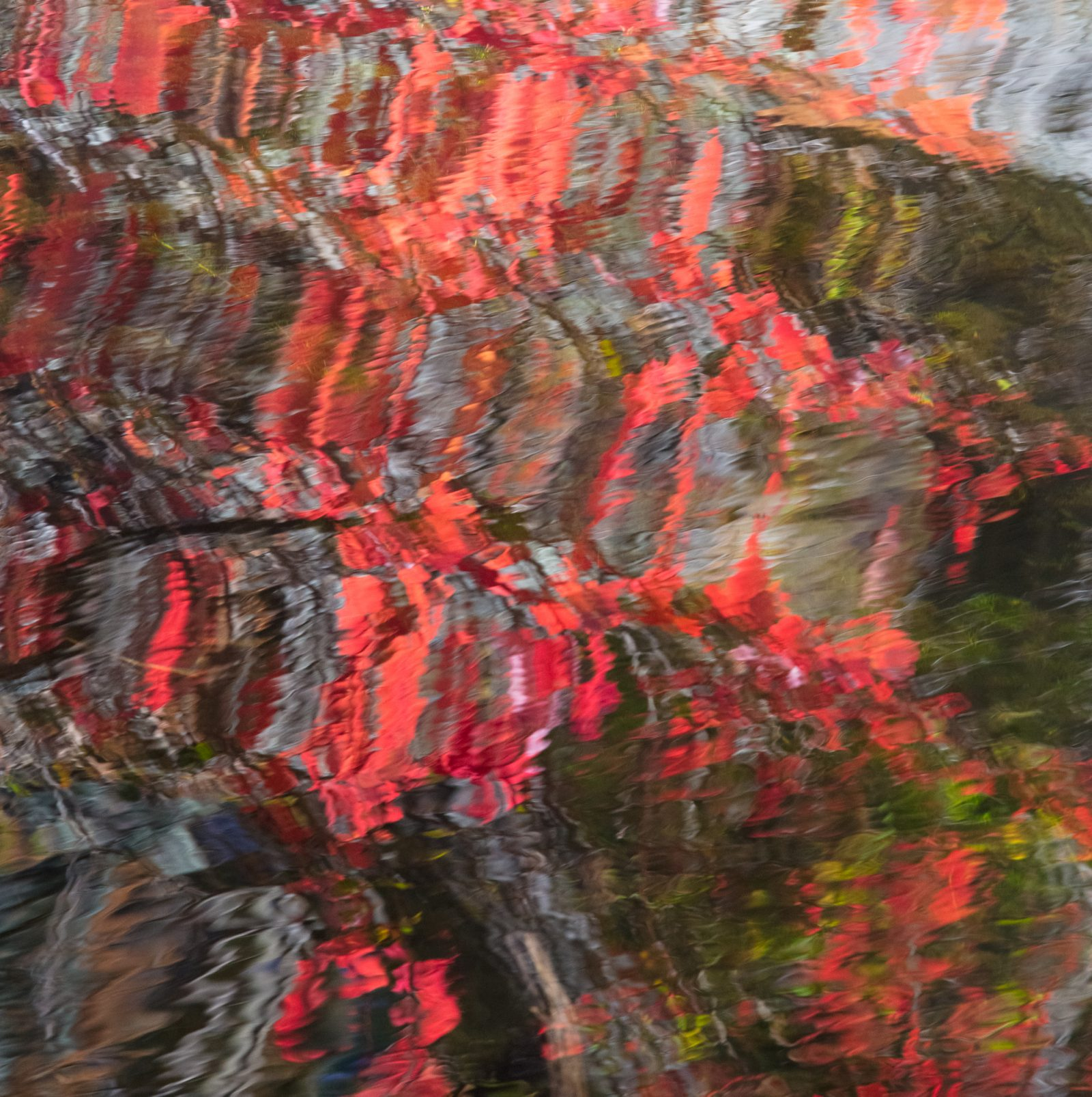 Reflective Fall  Abstracts #2
