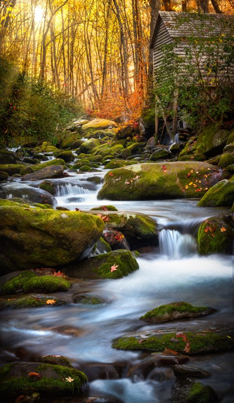 River in the Smokies