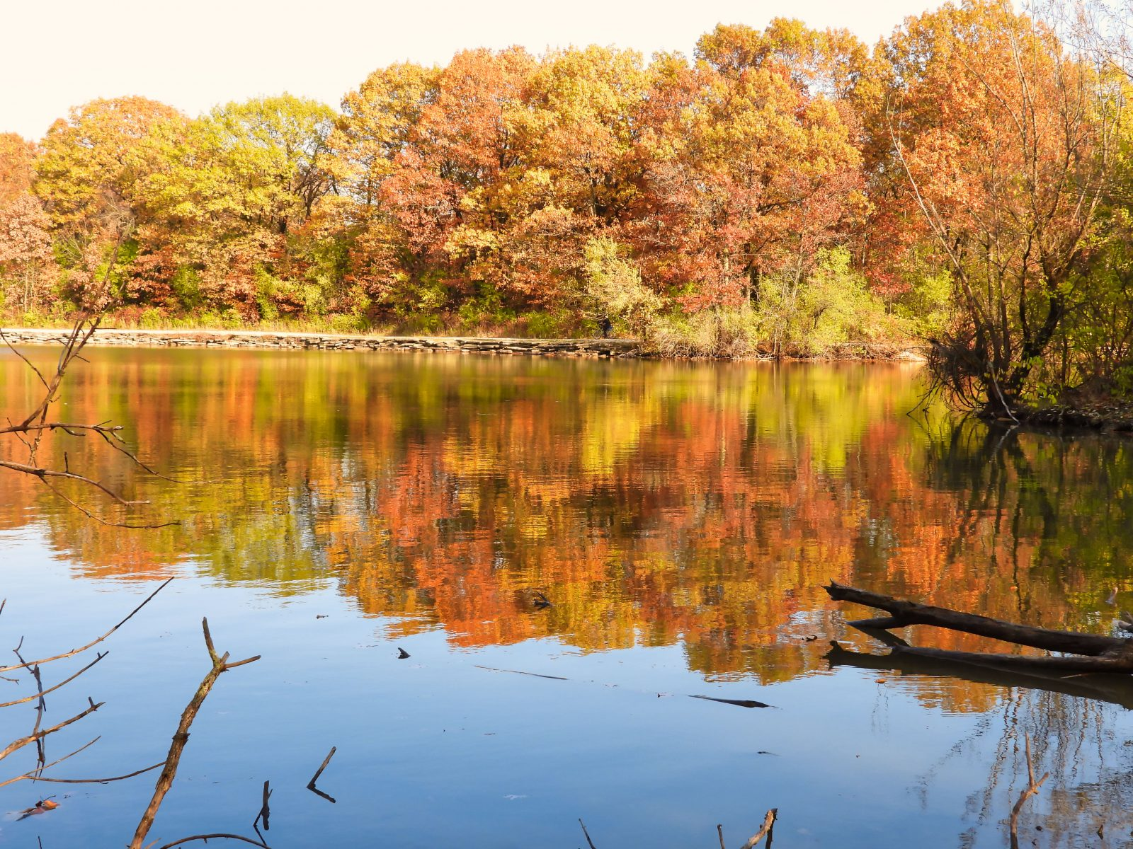 Orange, Red and Yellow Leaves Filled Forest of Trees Lined a Lake and Reflected in Lake Water on Beautiful Autumn Landscape View on a Fall Day in October