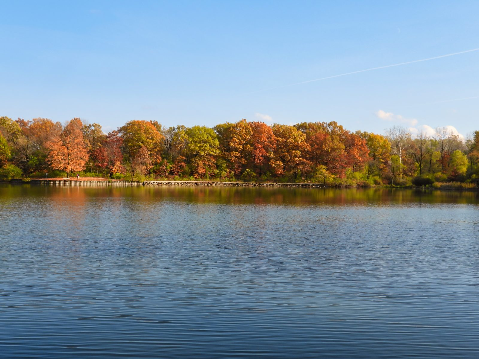 Fall Landscape View At Lake Brilliant Autumn Colored Trees with Red, Yellow, Brown, Orange Tree Leaves Reflected in Water on Bright October Day with Bright Blue Sky