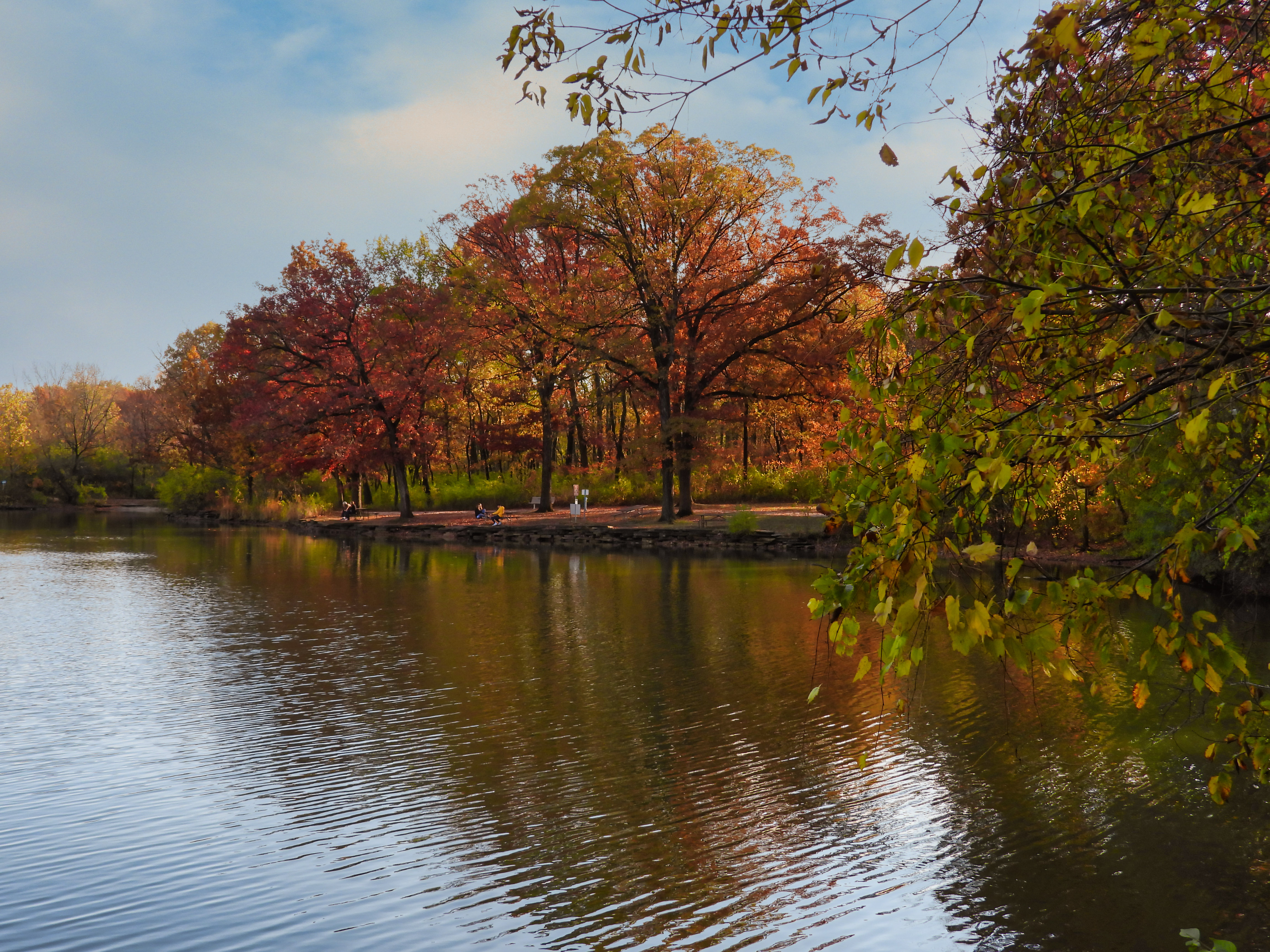 Autumn Landscape View from Park with Fall Colored Trees with Leaves in Red, Orange and Yellow on Lakeshore and Reflected in Water with Blue Sky Filled with Clouds
