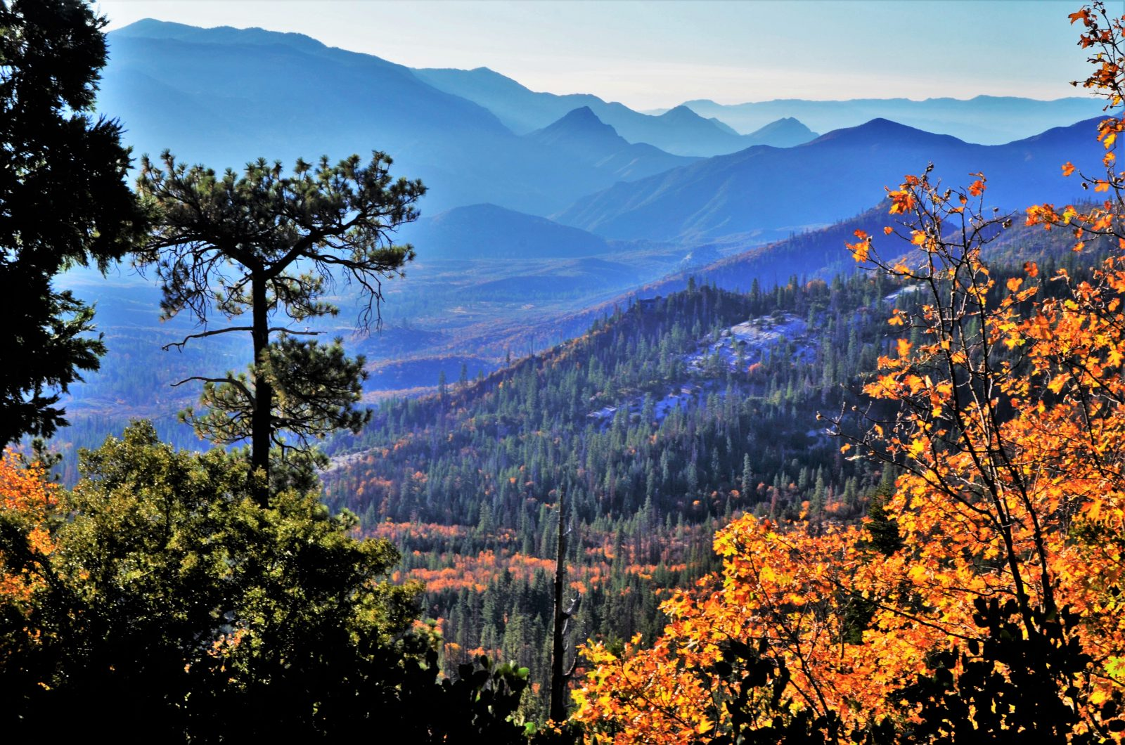Fall On The Western Divide