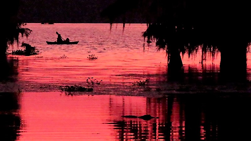 Sunset Kayaker & Alligator