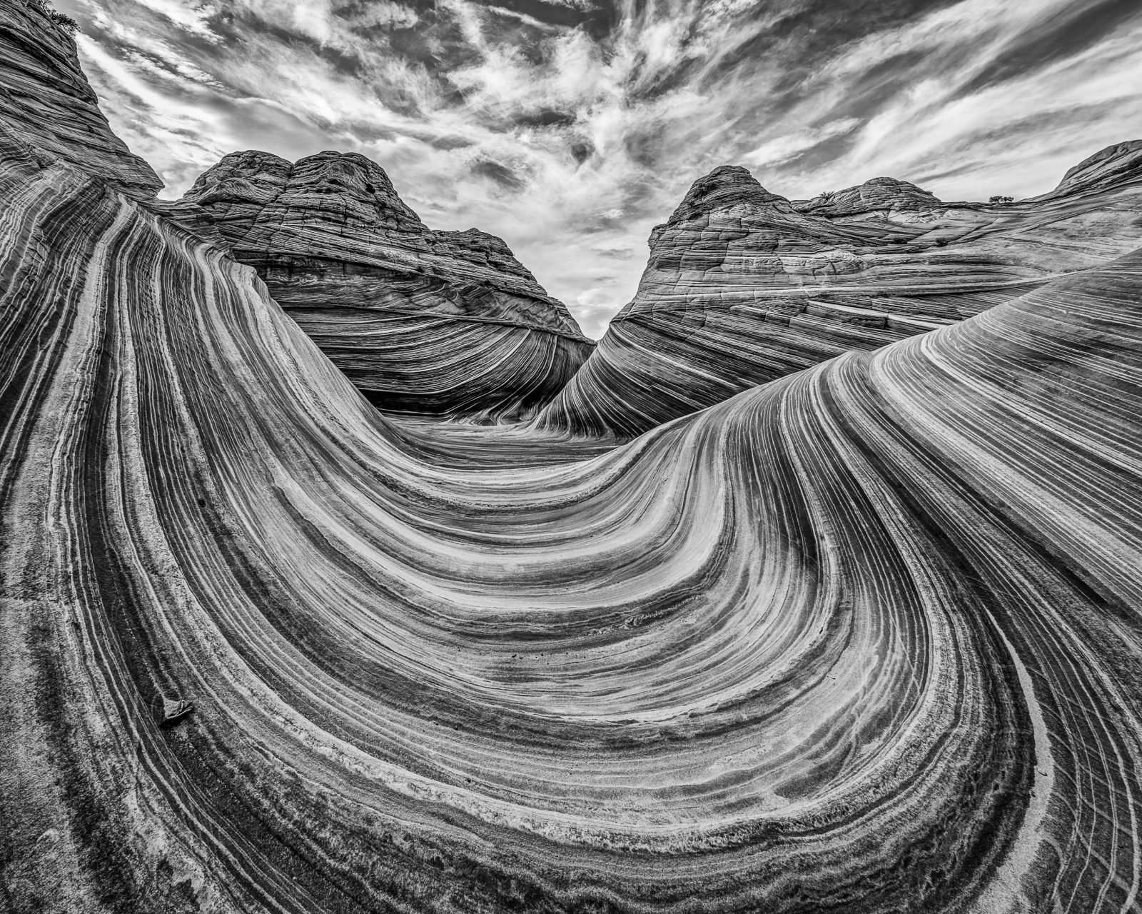 The Wave in Black and White