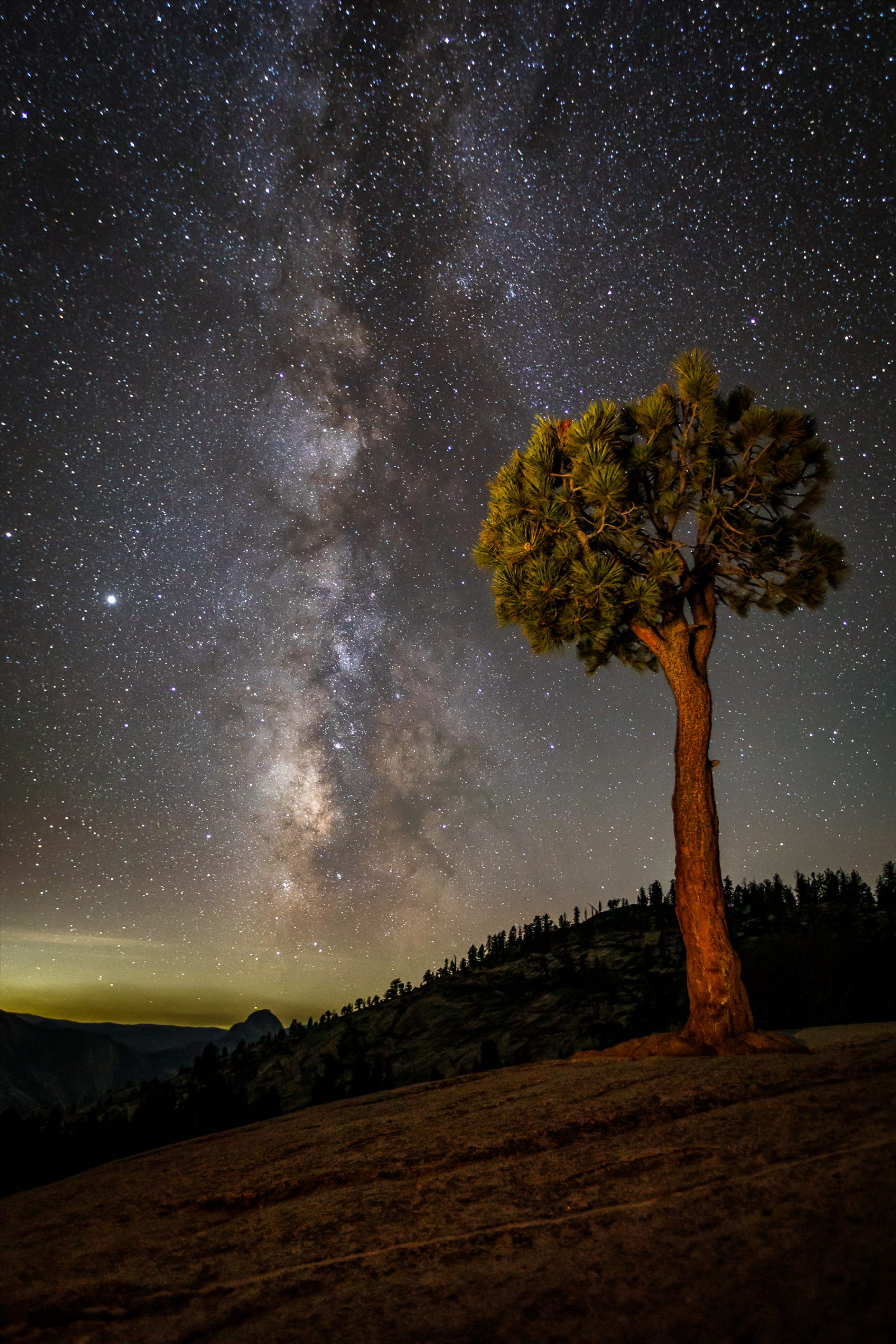 Milky Way by Juniper Tree