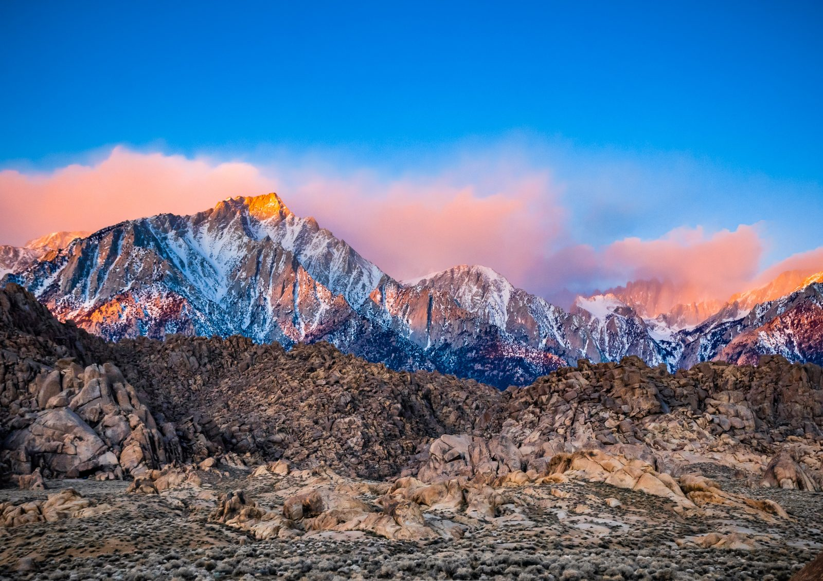 Cotton Candy & The Eastern Sierra
