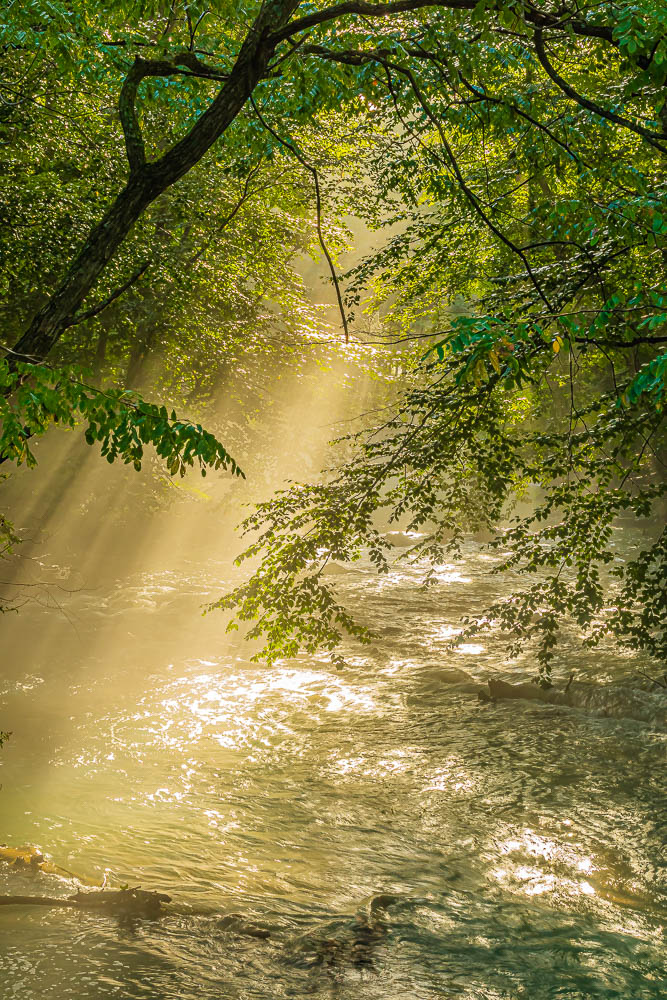 Light on the Little Nescopeck Creek