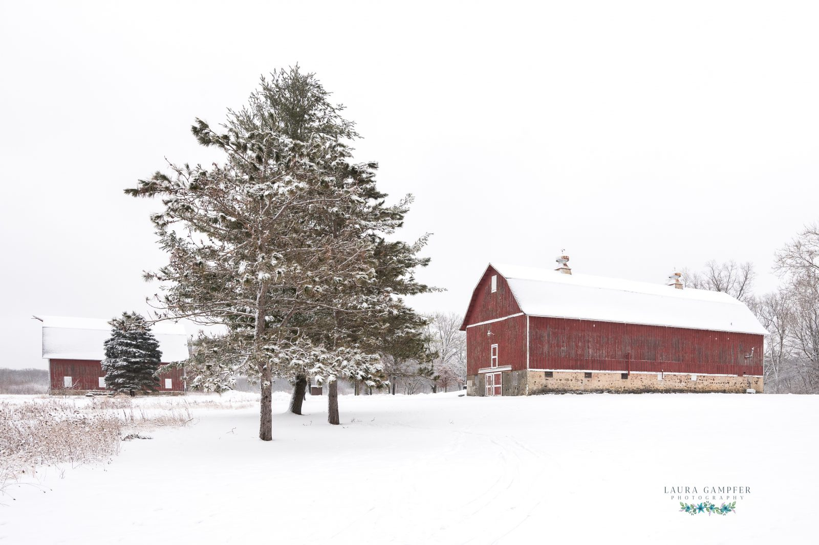 The Red Barns in Fresh Snow