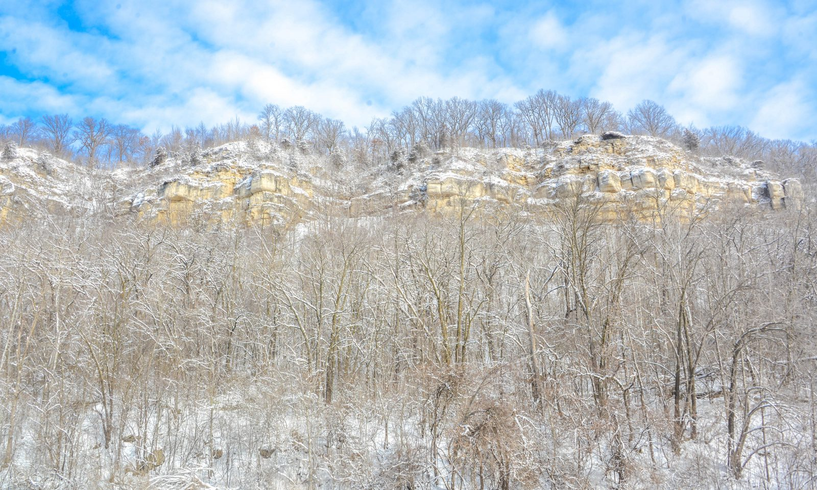Snow Covered River Bluffs